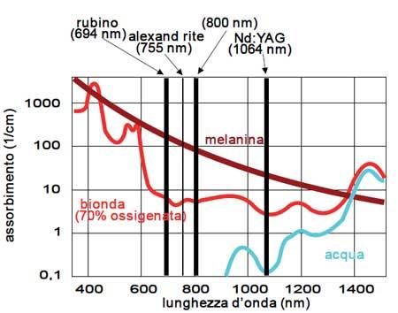 Curva di assorbimento della melanina